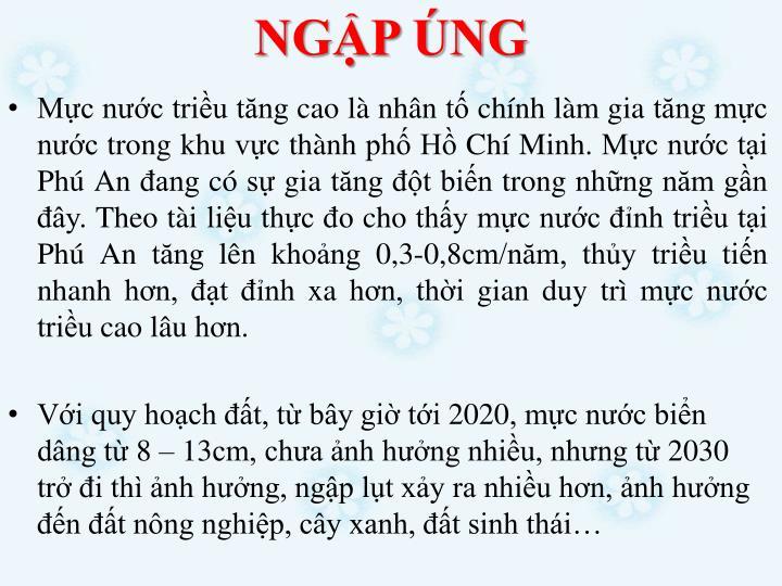 NGP NG
