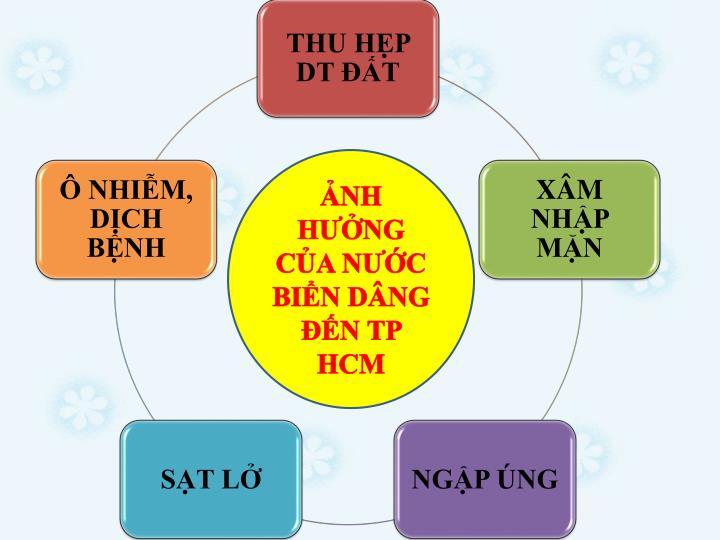 NH HNG CA NC BIN DNG N TP HCM