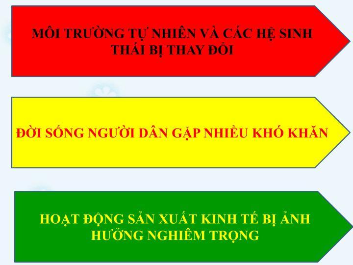 MI TRNG T NHIN V CC H SINH THI B THAY I