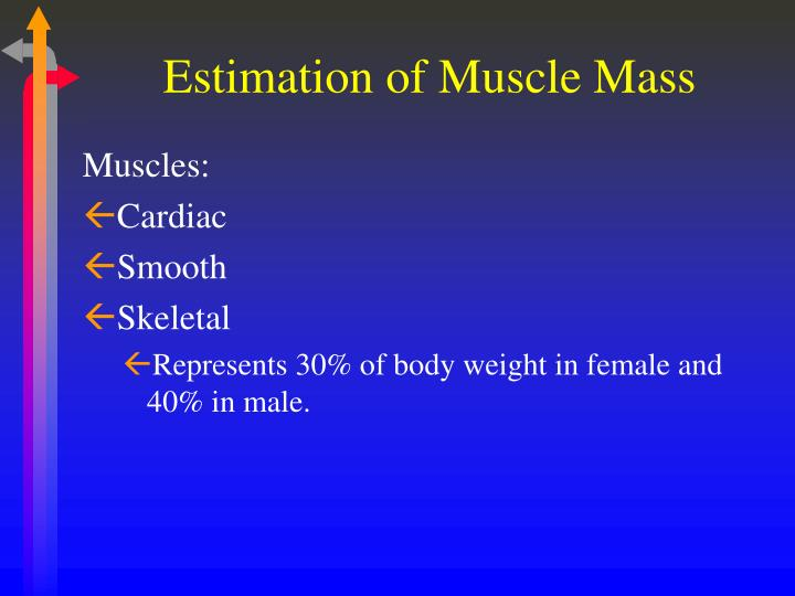 Estimation of muscle mass1
