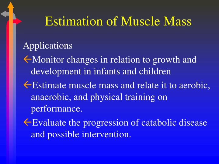Estimation of muscle mass2