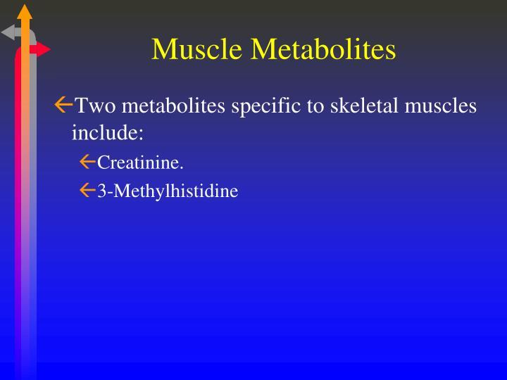 Muscle Metabolites