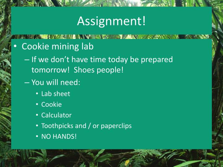 Assignment!