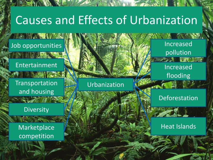 Causes and Effects of Urbanization