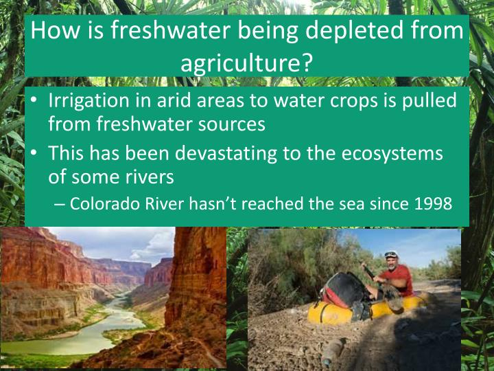 How is freshwater being depleted from agriculture?