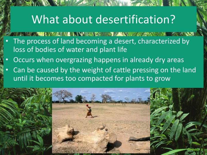 What about desertification?