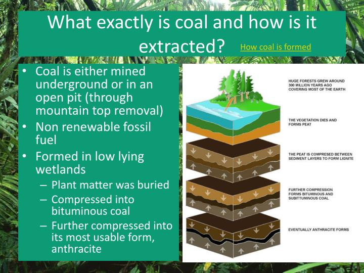 What exactly is coal and how is it extracted?