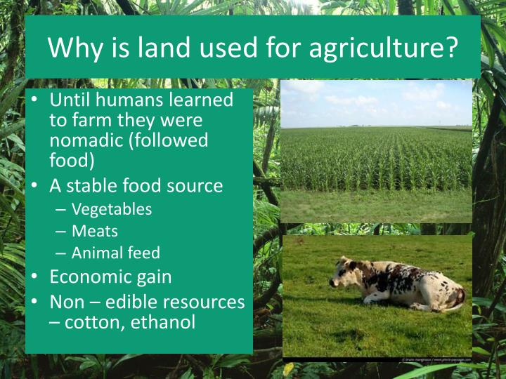 Why is land used for agriculture?