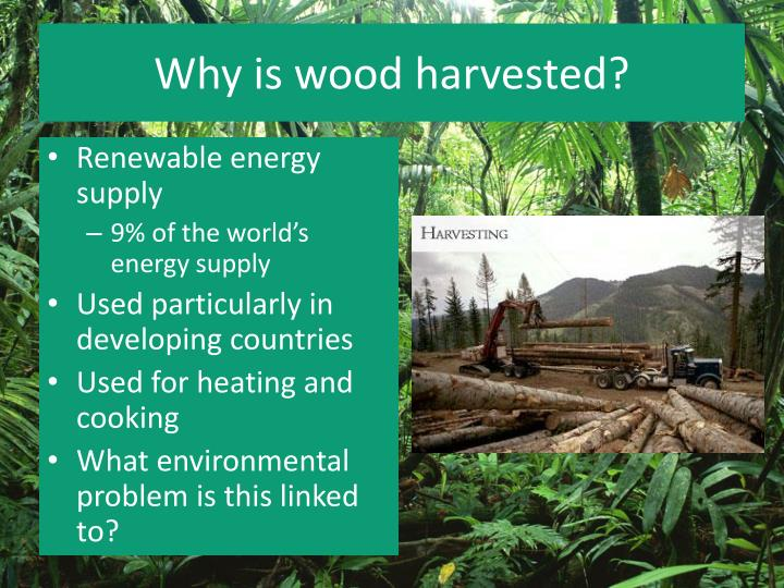 Why is wood harvested?
