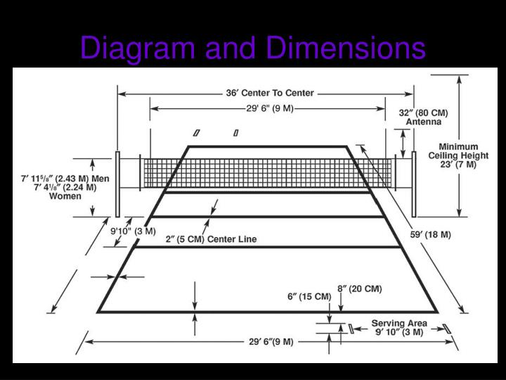 Diagram and Dimensions