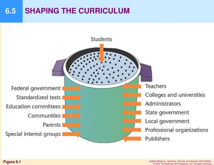 SHAPING THE CURRICULUM