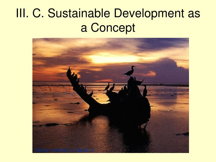 III. C. Sustainable Development as a Concept