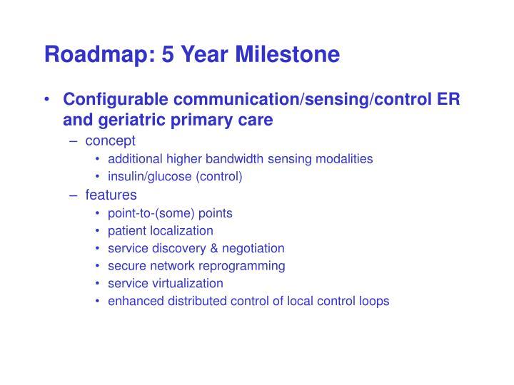 Roadmap: 5 Year Milestone