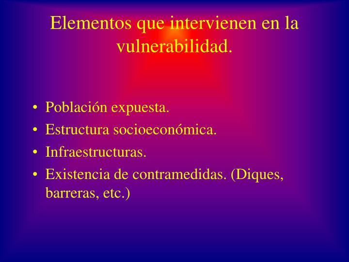 Elementos que intervienen en la vulnerabilidad.