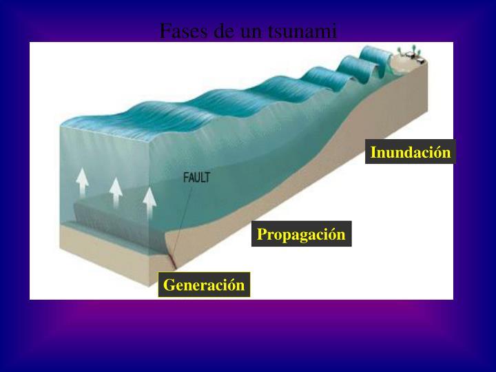 Fases de un tsunami