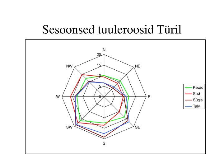 Sesoonsed tuuleroosid Türil