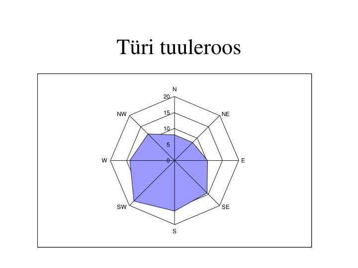 Türi tuuleroos