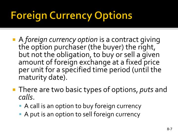 Foreign Currency Options