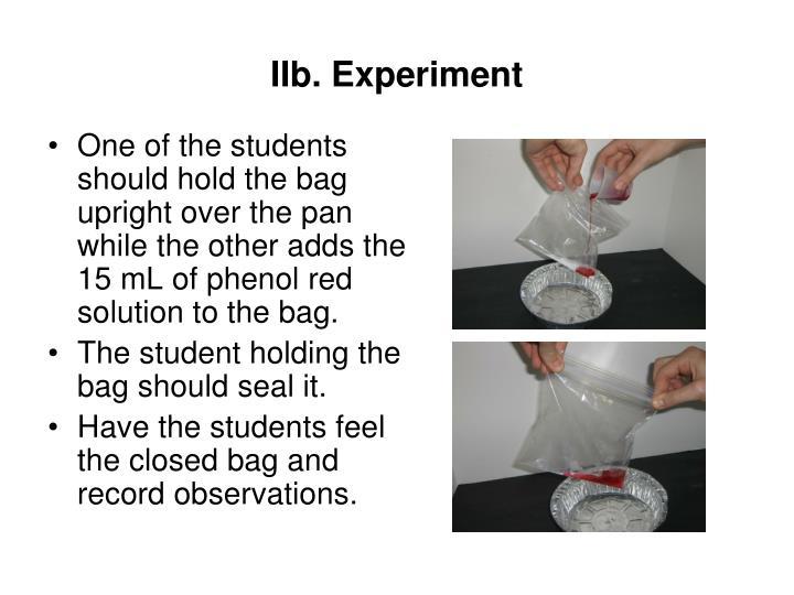 IIb. Experiment