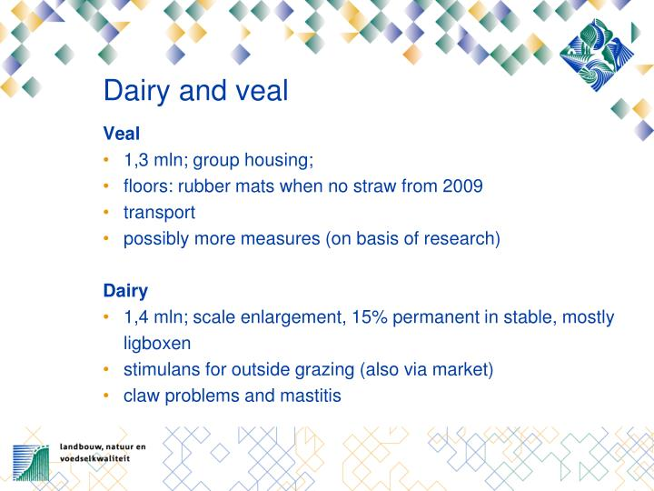Dairy and veal