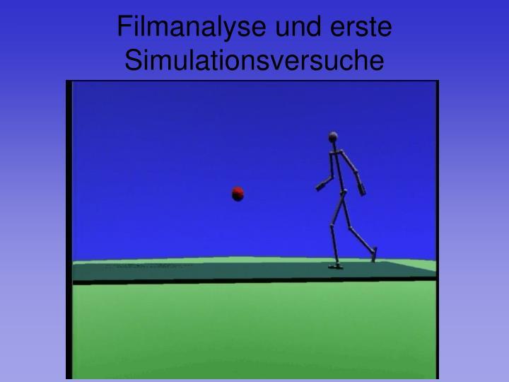 Filmanalyse und erste Simulationsversuche