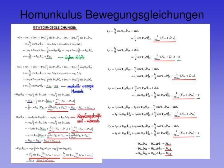 Homunkulus Bewegungsgleichungen