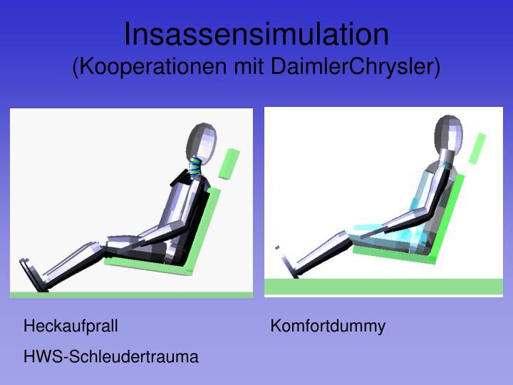 Insassensimulation