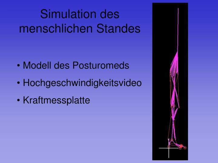 Simulation des menschlichen Standes