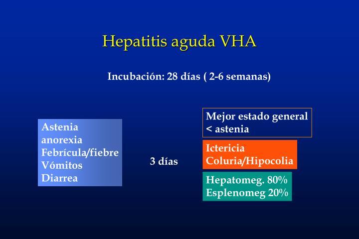 Hepatitis aguda VHA