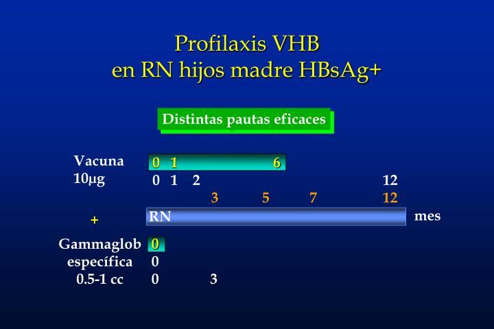 Profilaxis VHB
