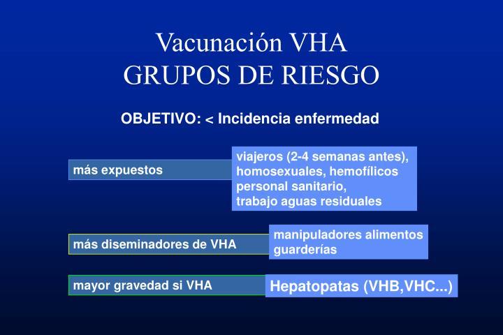 Vacunación VHA