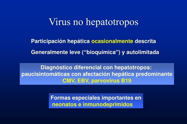 Virus no hepatotropos