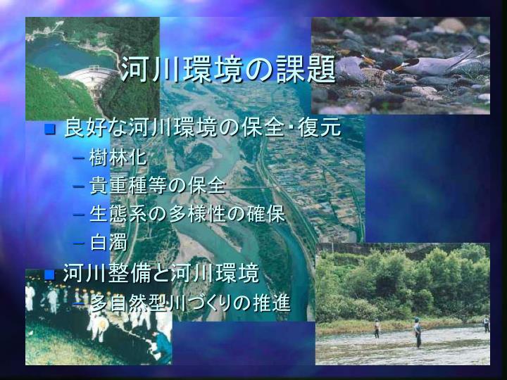 河川環境の課題