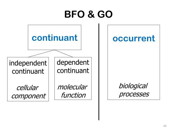BFO & GO