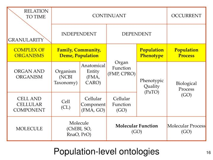 Population-level ontologies