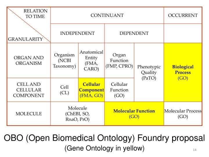 OBO (Open Biomedical Ontology) Foundry proposal