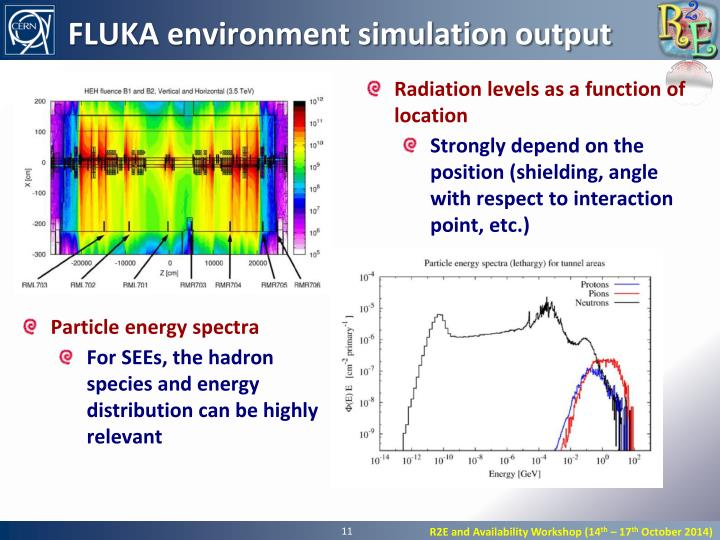 FLUKA environment simulation output