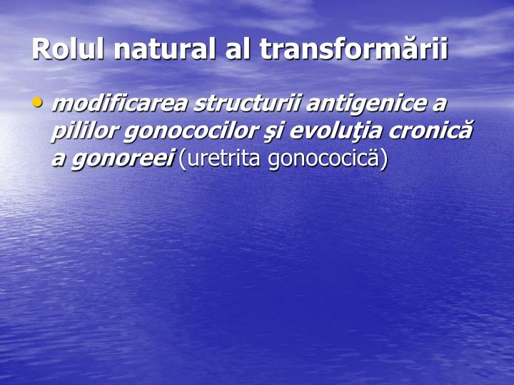 Rolul natural al transformării