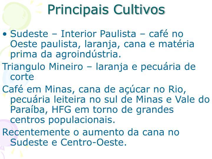 Principais Cultivos