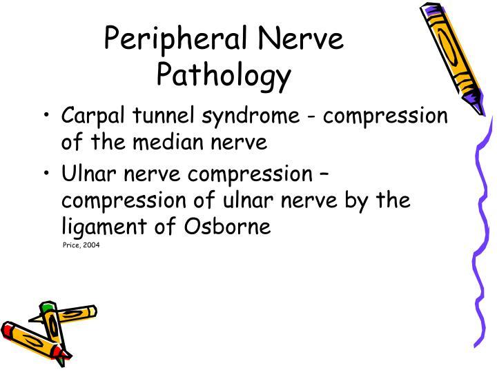 Peripheral Nerve Pathology