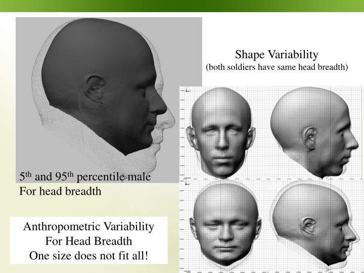 Shape Variability