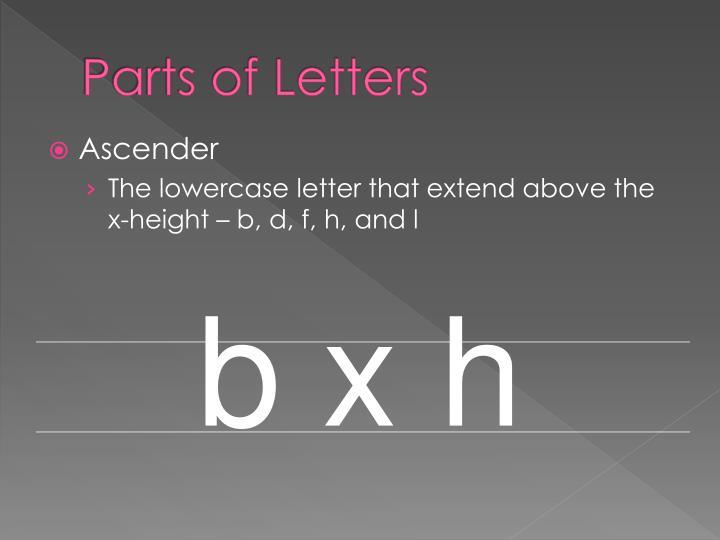 b x h