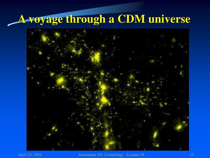 A voyage through a CDM universe