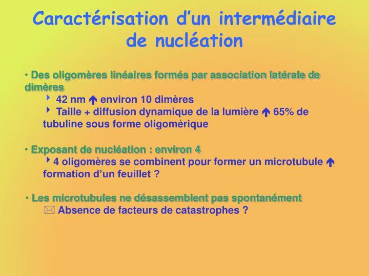 Caractérisation d'un intermédiaire de nucléation