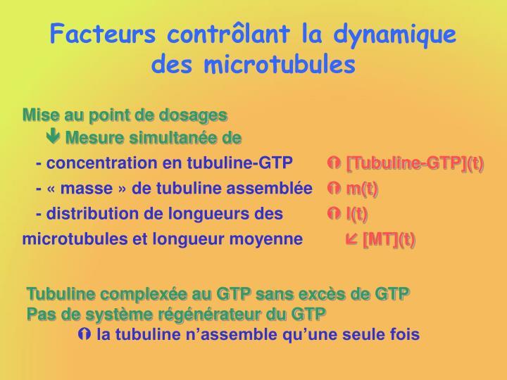 Facteurs contrôlant la dynamique des microtubules
