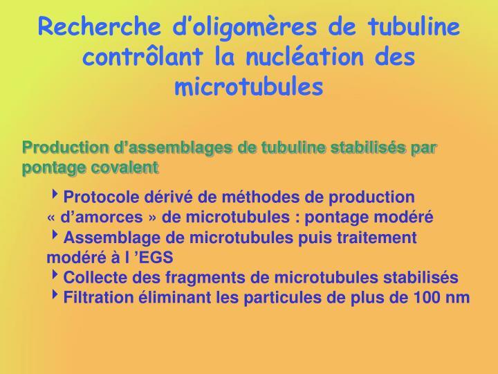 Recherche d'oligomères de tubuline contrôlant la nucléation des microtubules