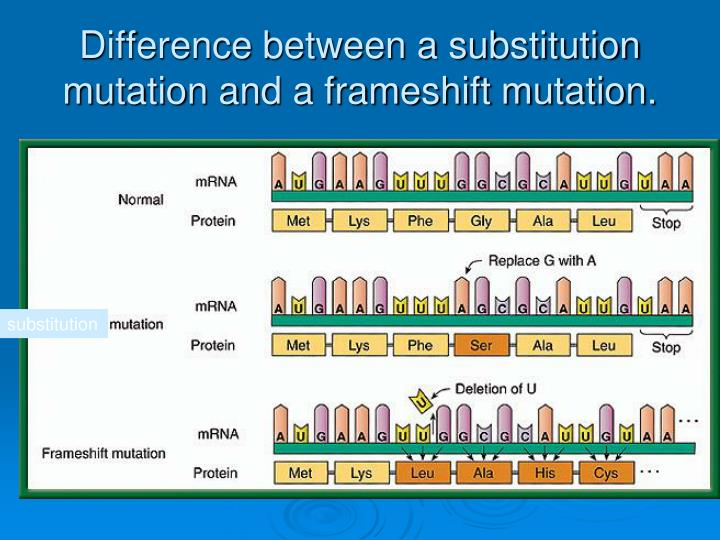Difference between a substitution mutation and a frameshift mutation.
