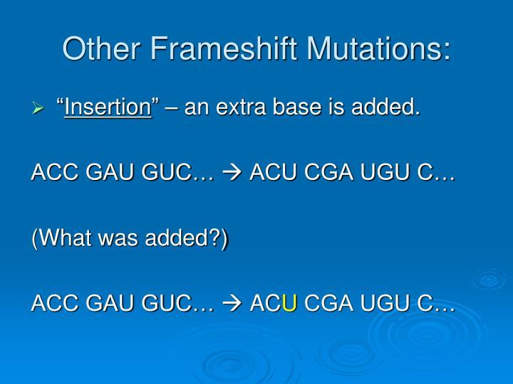 Other Frameshift Mutations: