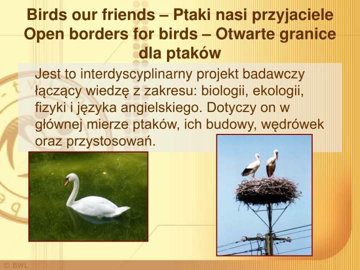 Birds our friends – Ptaki nasi przyjaciele