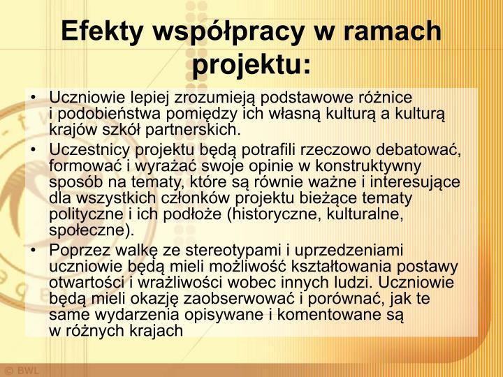 Efekty współpracy w ramach projektu: